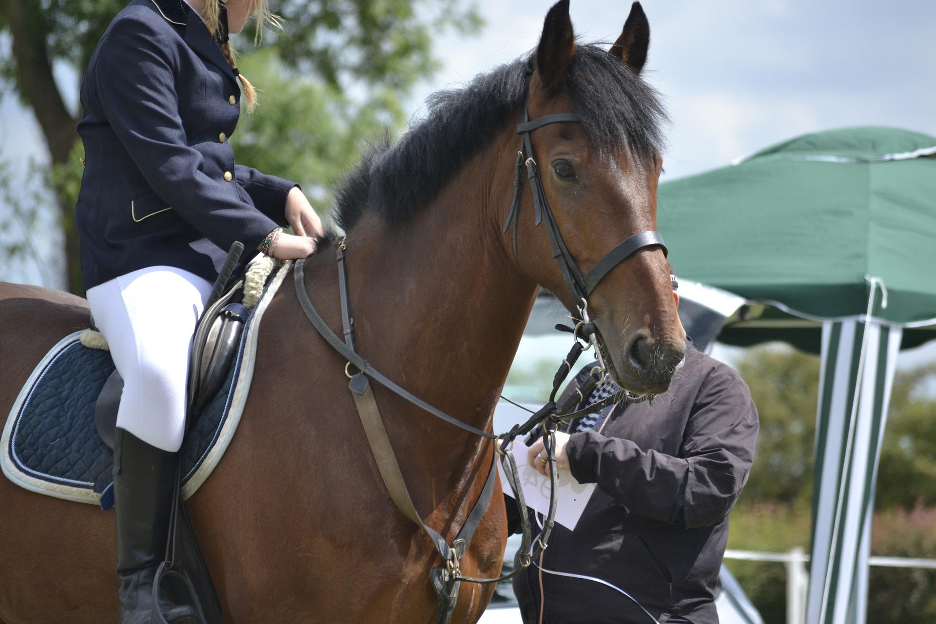 Horse Riding Accident Compensation Claims